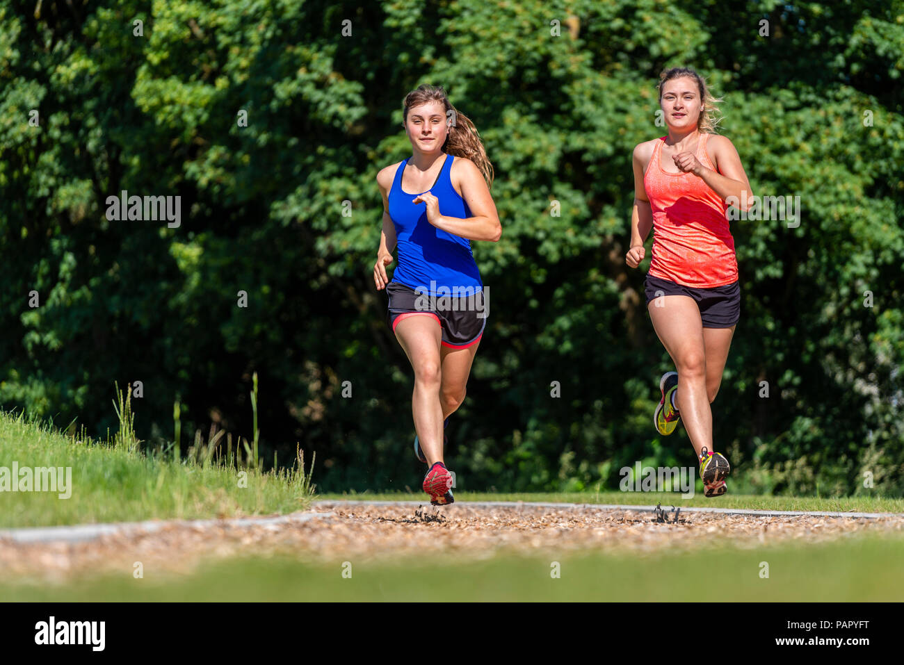 Female joggers on woodchip trail - Stock Image