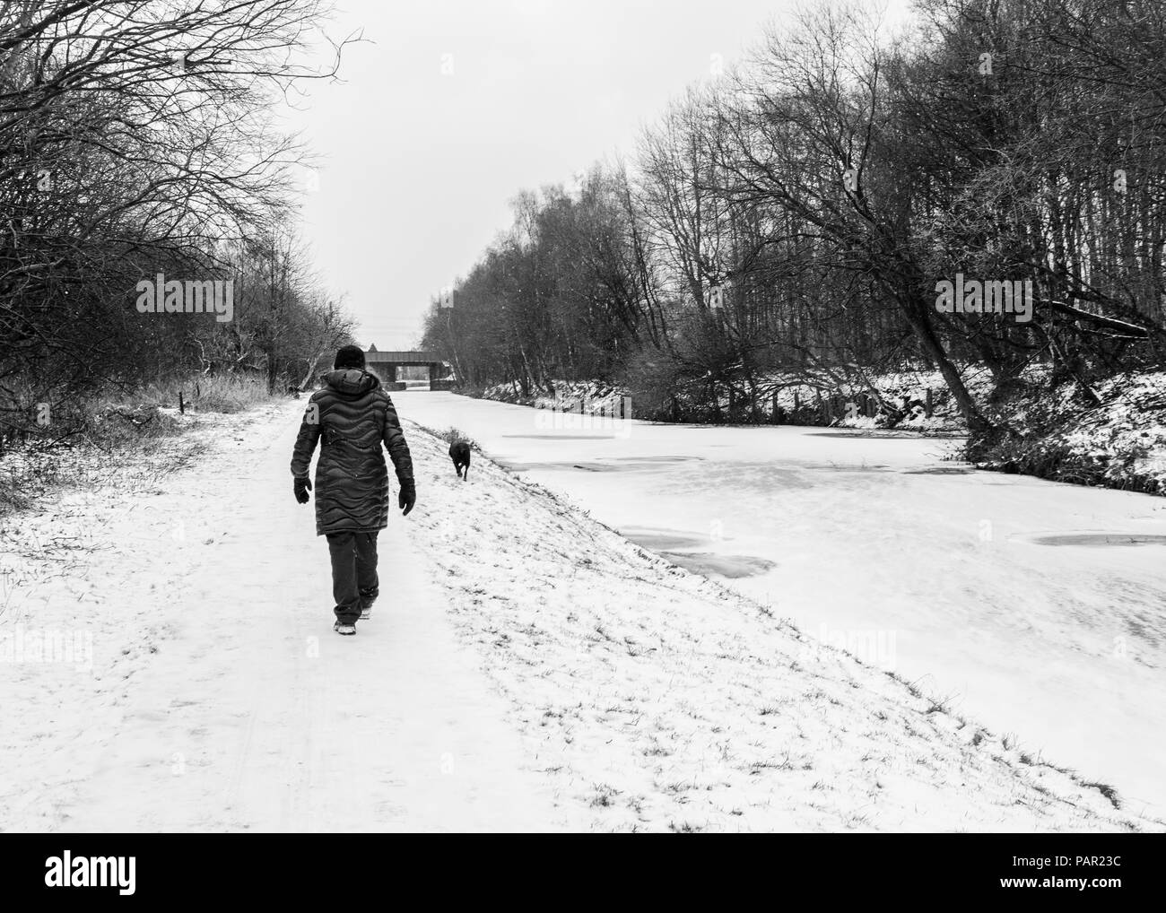 A woman walks her dog down the icy and snow covered tow path along the Leeds-Liverpool canal during a snow shower Stock Photo