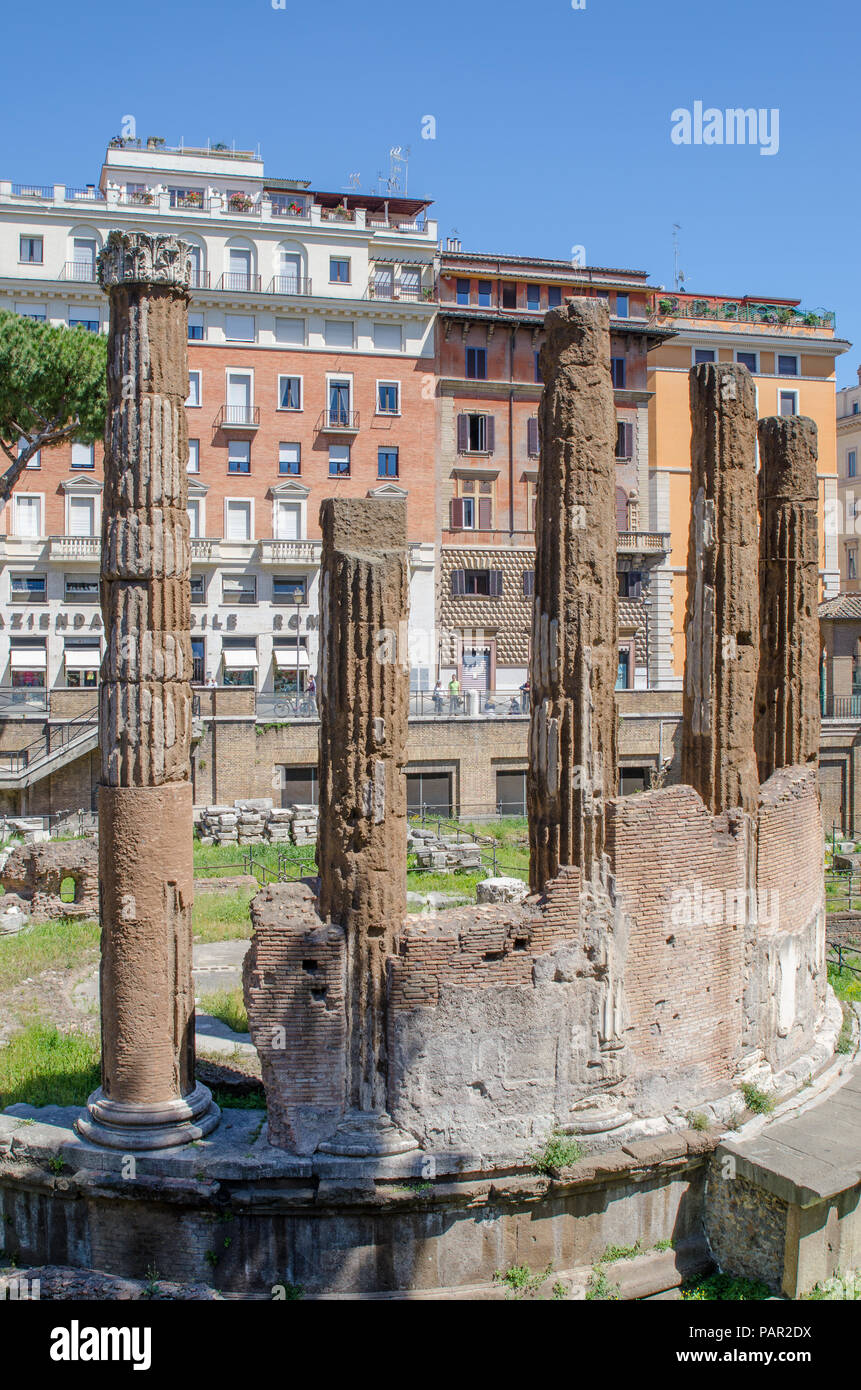Largo di Torre Argentina, is an archaeological site close to where Julius Caesar was assassinated, and is home to a colony of cats. - Stock Image