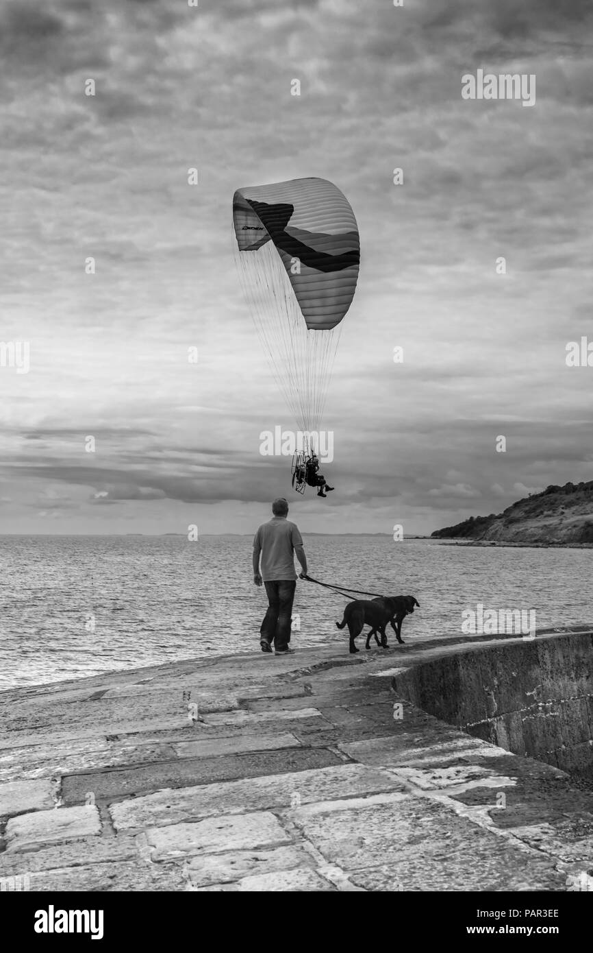 A Paraglider sails serenely past a dog walker on the Cobb at Lyme Regis in Dorset, England. - Stock Image