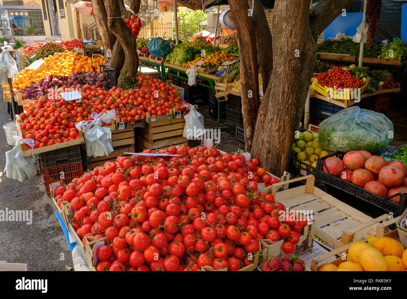 Albania, Tirana, stall with tomatoes, vegetables and fruits - Stock Image