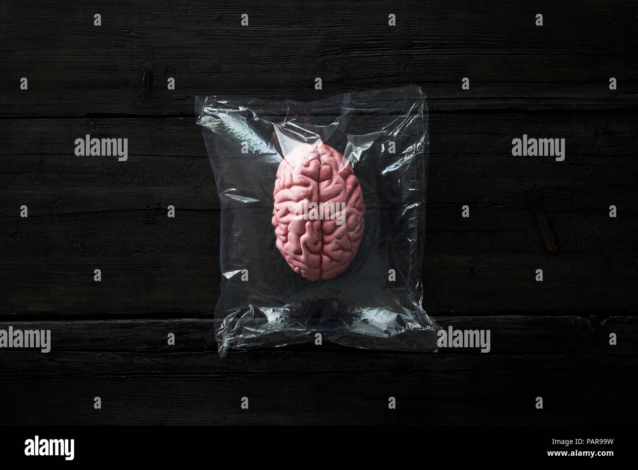 Brain, isolated in plastic bag - Stock Image
