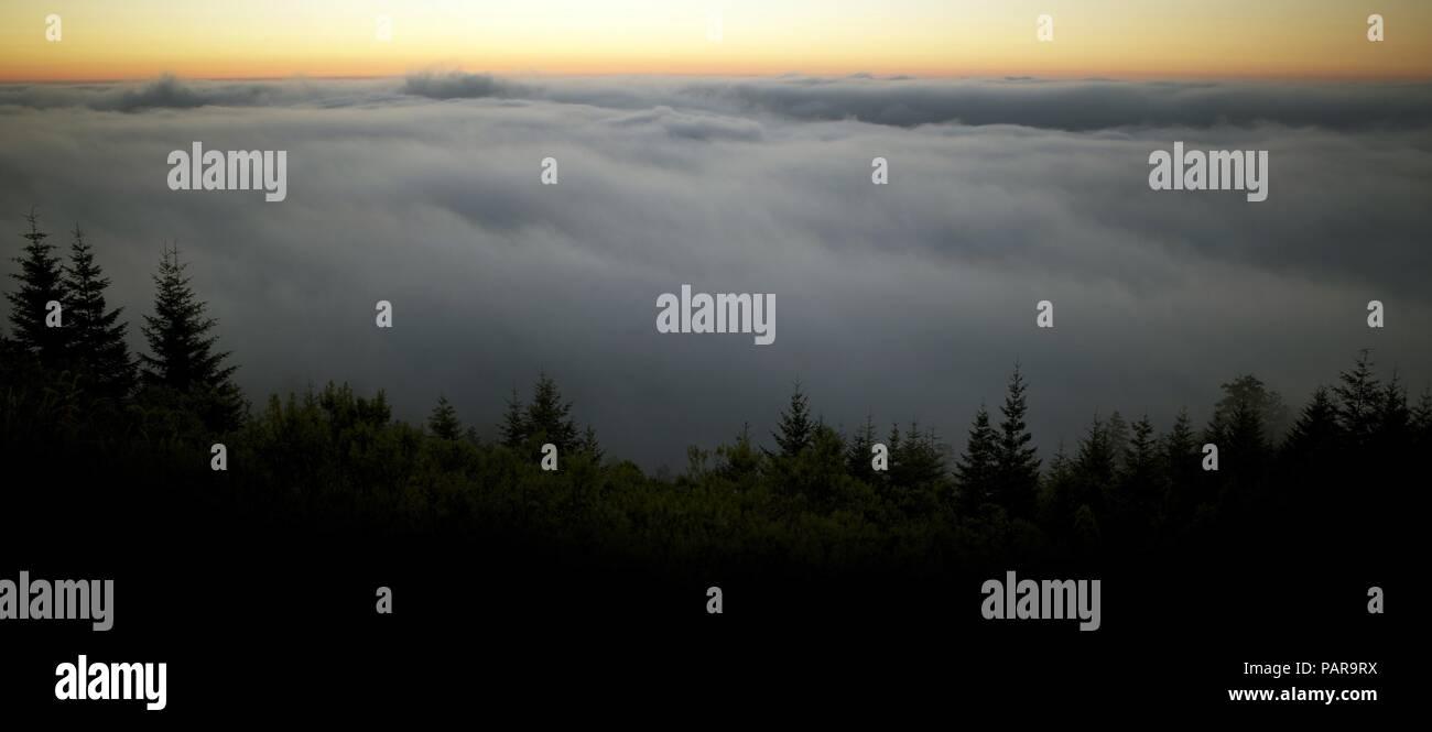 Scenic Foggy Landscape. Fog Below the Summit of the Mountain. Sunset Scenery. Port Angeles, Washington, United States. Panoramic Photo. - Stock Image