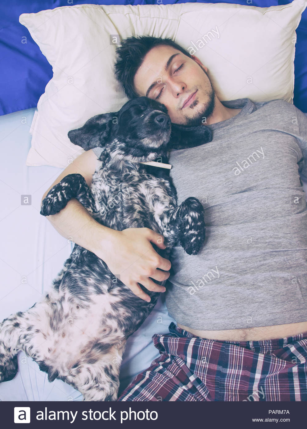 Young man lying with dog on bed - Stock Image