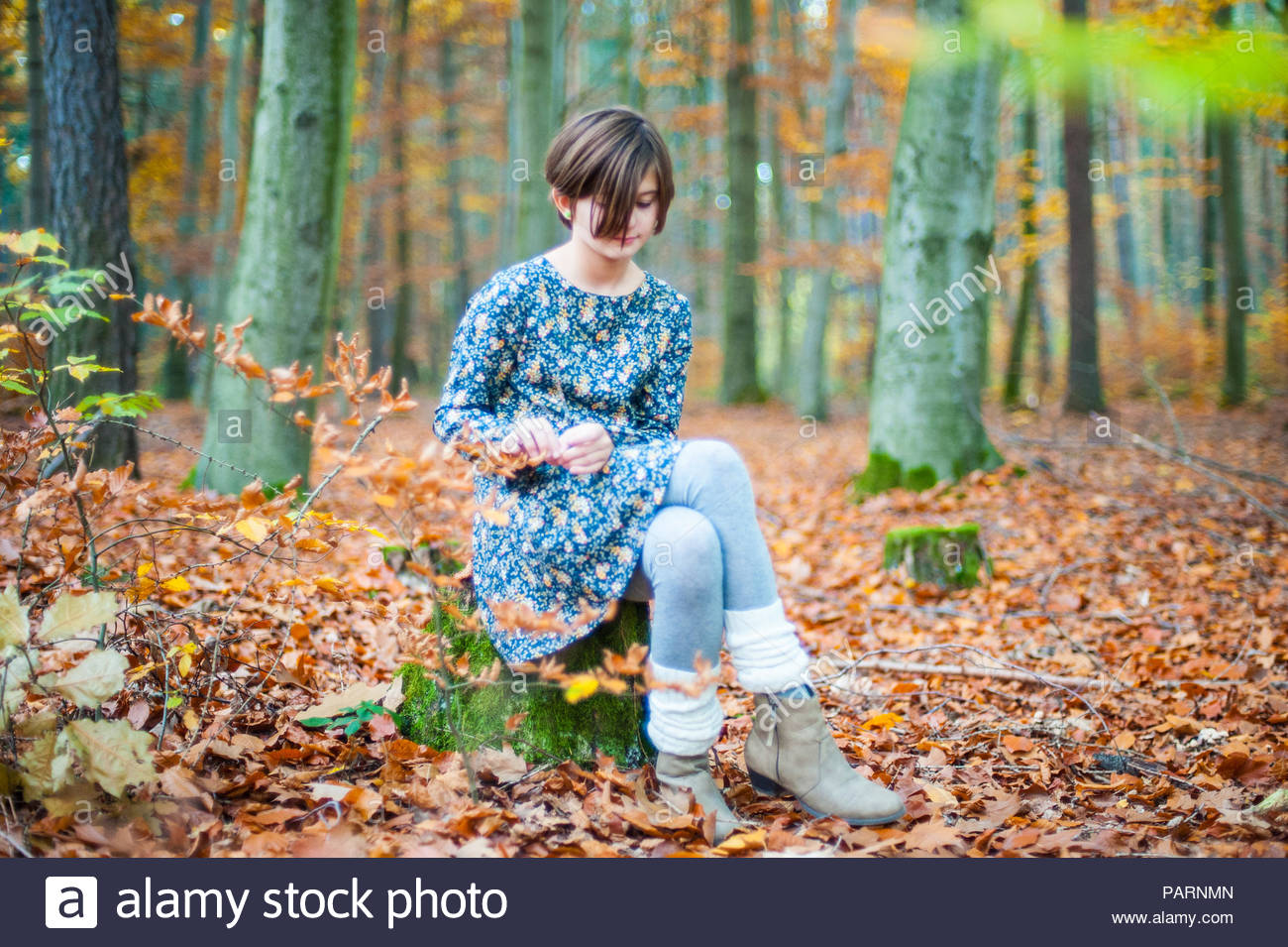 A young girl sitting in the forest during autumn - Stock Image