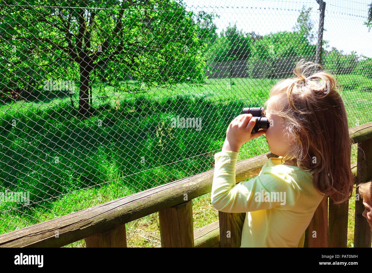 Pretty girl explore wild park and looking for exotic animals with her binocular - Stock Image