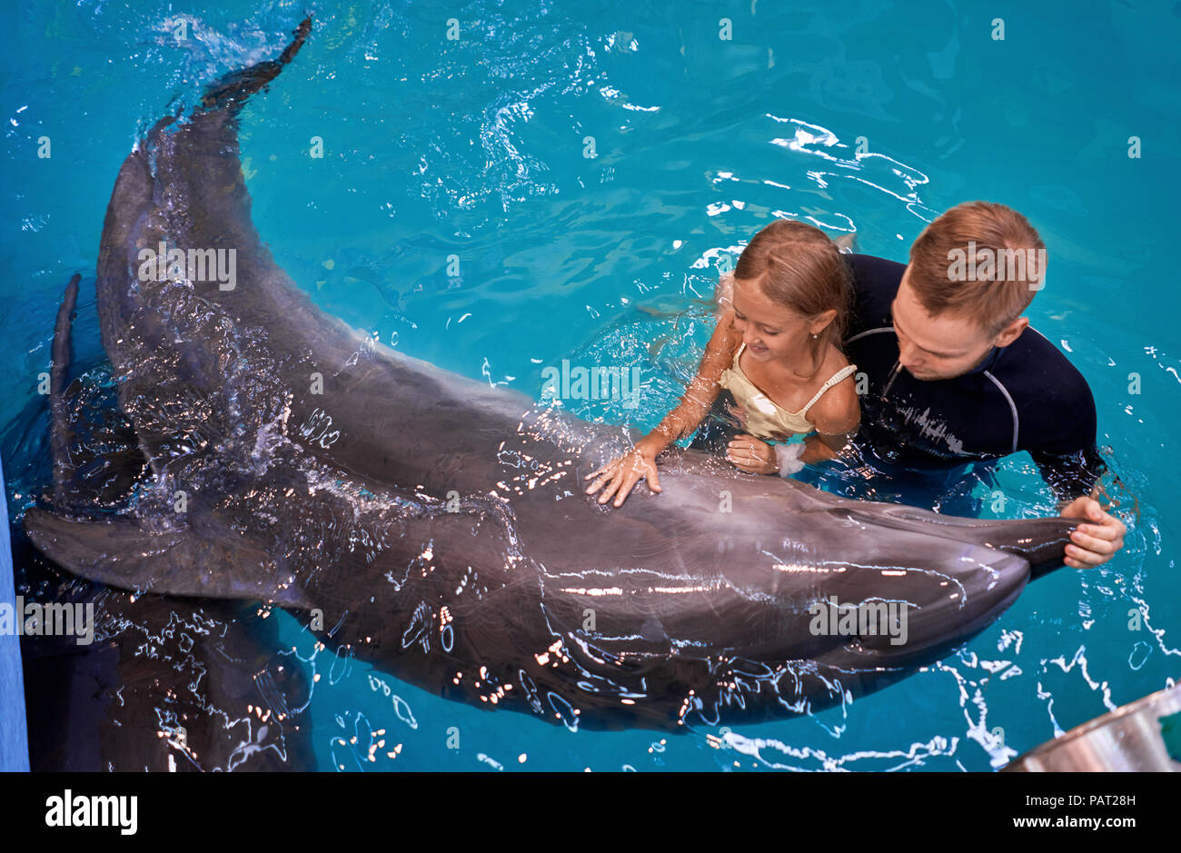 child swims with a Dolphin Stock Photo