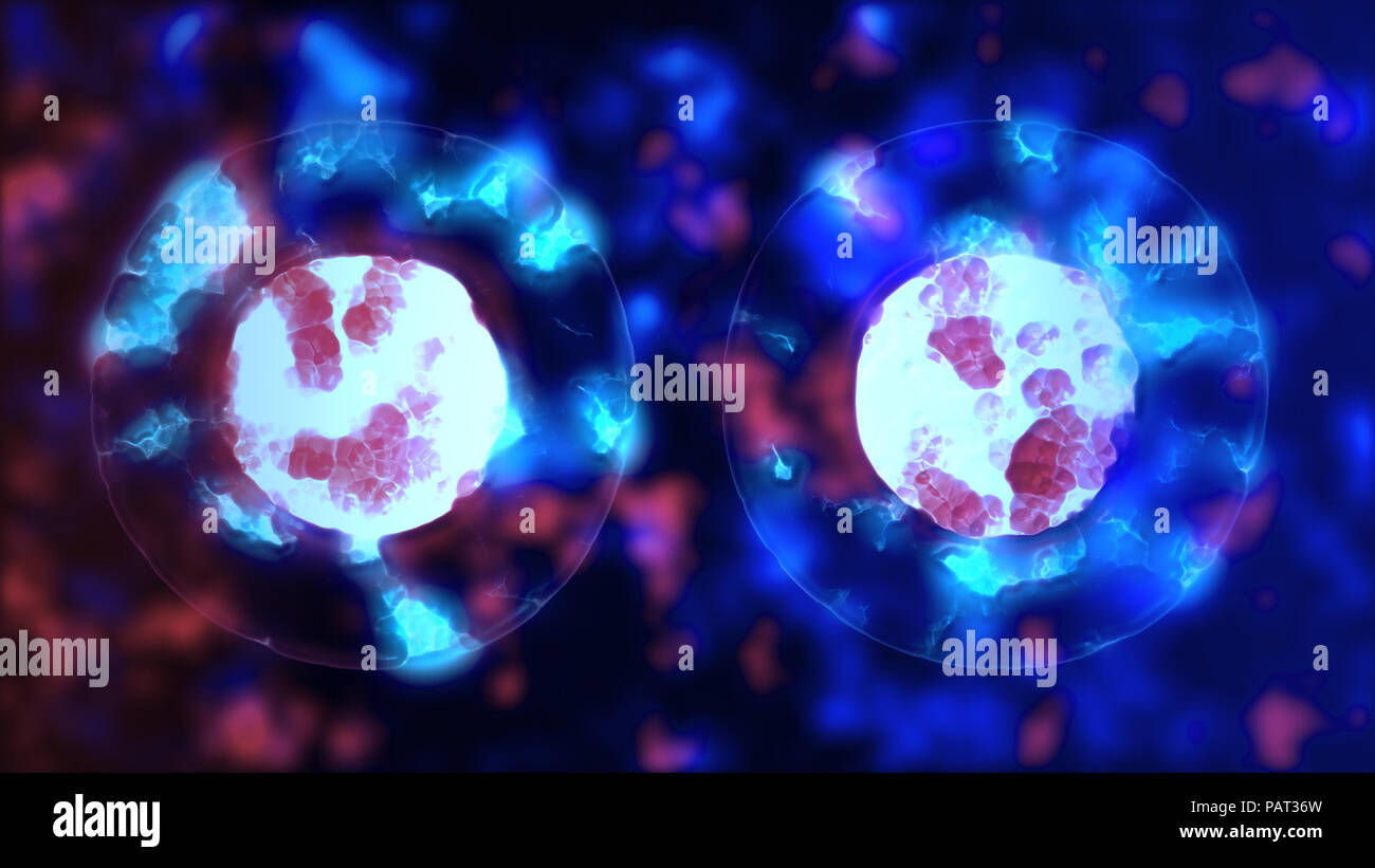 Cell mitosis. Cellular division of cell-like lifeform. Microbiology illustration of cells duplicating. Biology scientific concept of birth and life Stock Photo