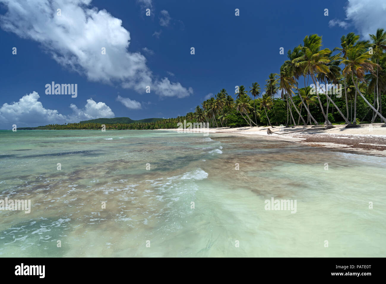 Tropical Caribbean beach in the Dominican Republic - Stock Image