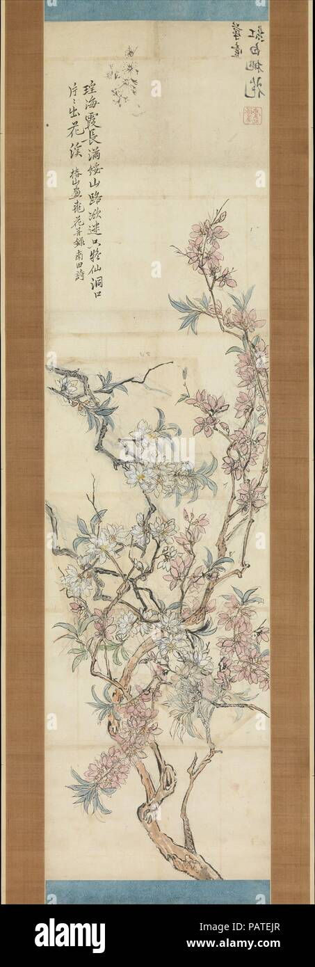 Red and White Peach Blossoms, Preparatory Sketch. Artist: Tsubaki Chinzan (Japanese, 1801-1854). Culture: Japan. Dimensions: Image: 56 7/8 x 14 13/16 in. (144.5 x 37.6 cm)  Overall with mounting: 85 1/4 x 24 3/16 in. (216.5 x 61.4 cm). Date: 1843.  This pair of scrolls (with 1975.268.115) provides a unique insight into the studio process of a painter working in the later phase of the Nanga tradition. The scroll on the right is a shita-e, or preparatory sketch, for the completed work on the left. Tsubaki Chinzan constructed the composition using a collage method: the branches on the upper left, - Stock Image