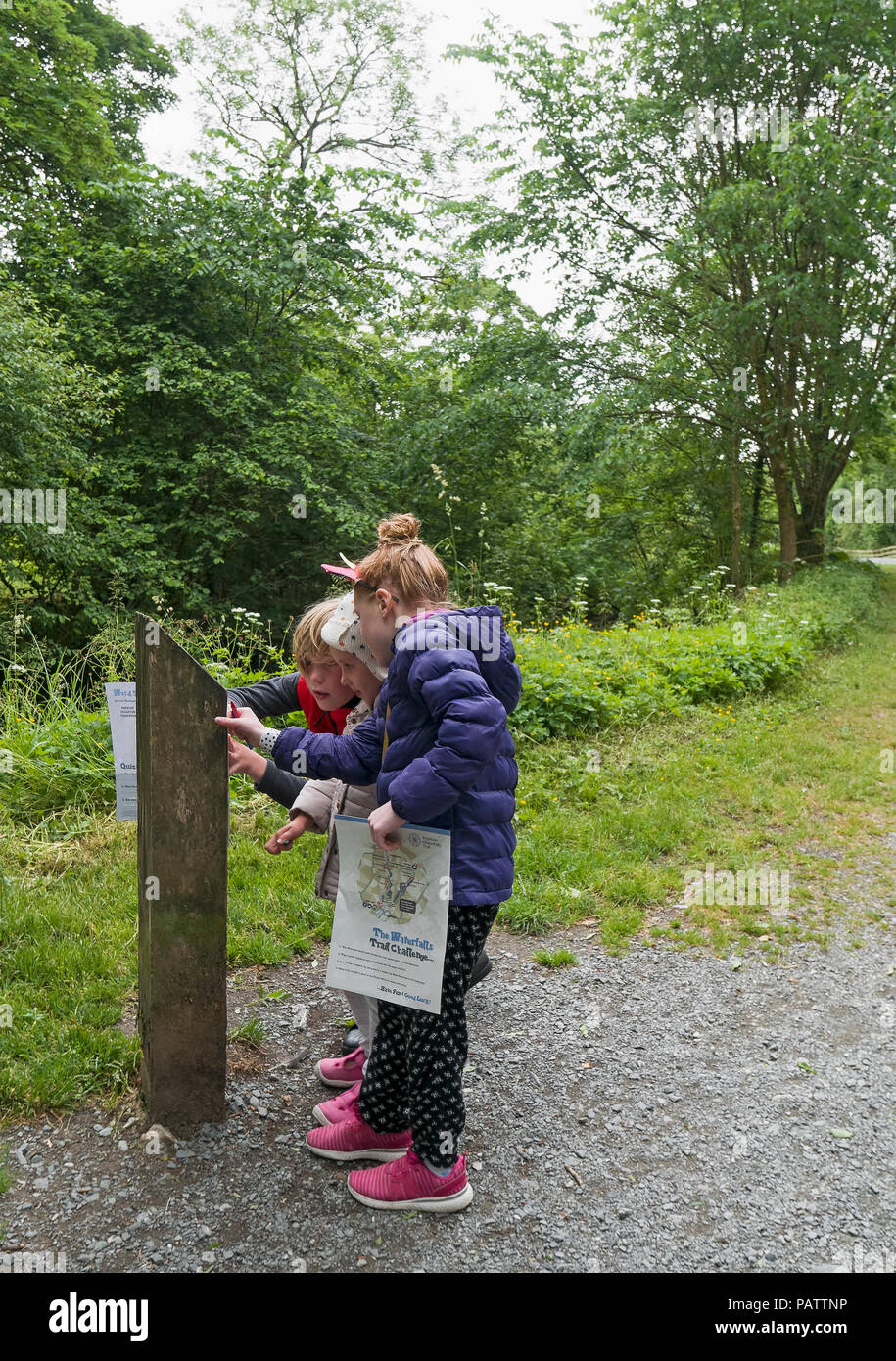 Children take part in the activity trail challenge at Ingleton Waterfalls challenge at Ingleton, Carnforth, Lancashire. - Stock Image