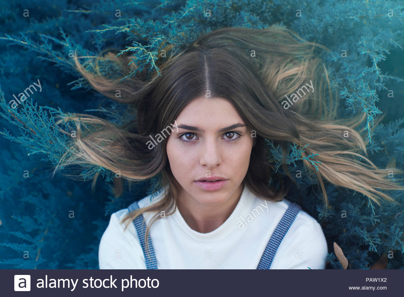 Close-up portrait of a beautiful young woman looking into the camera - Stock Image