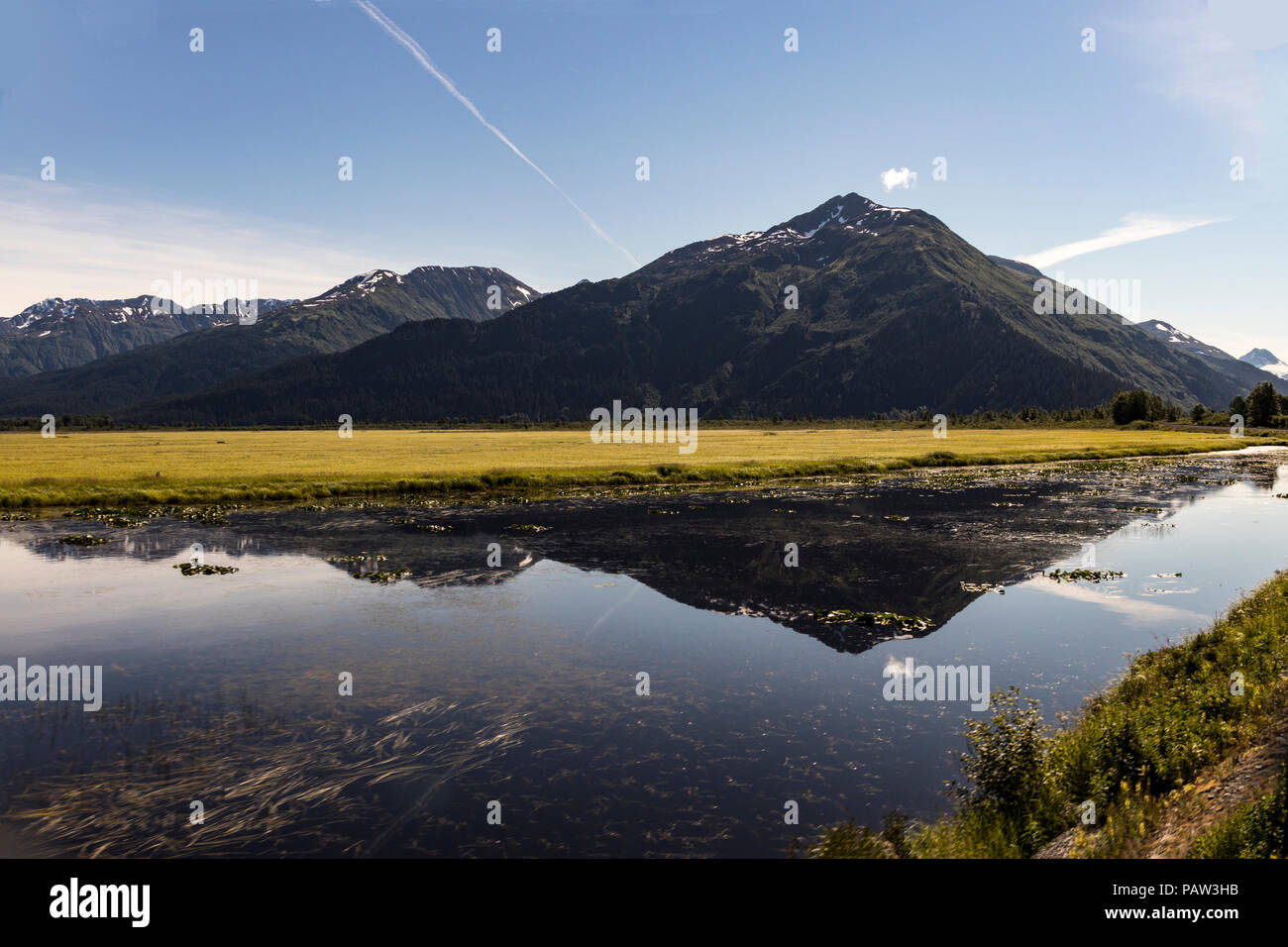 Potter Marsh, wildlife viewing area in the Anchorage area with a view of the Chugach Mountains, Alaska, USA in summertime. - Stock Image