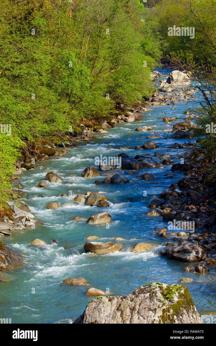 The river from the monte bianco, Italy - Stock Image