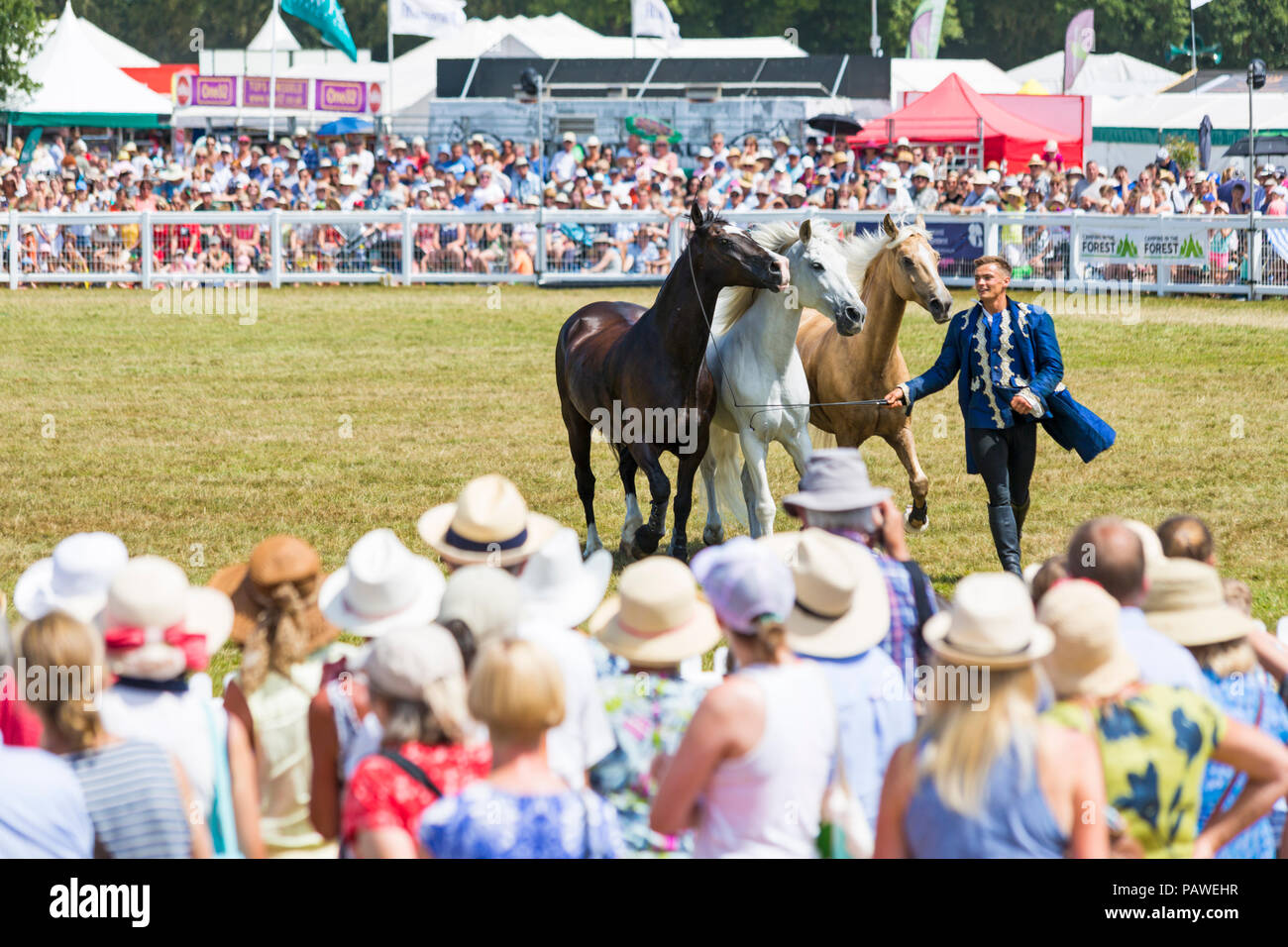 Brockenhurst, Hampshire, UK. 25th July 2018. Crowds flock to the second day of the New Forest & Hampshire County Show on a hot sunny day. The Atkinson Stunt Display team who appeared on Poldark and Peaky Blinders thrill the crowds with their tricks and stunts, including Roman Riding, Drags, Falls, Pick Ups, Flips, Horses Rearing and Laying Down. - Stock Image