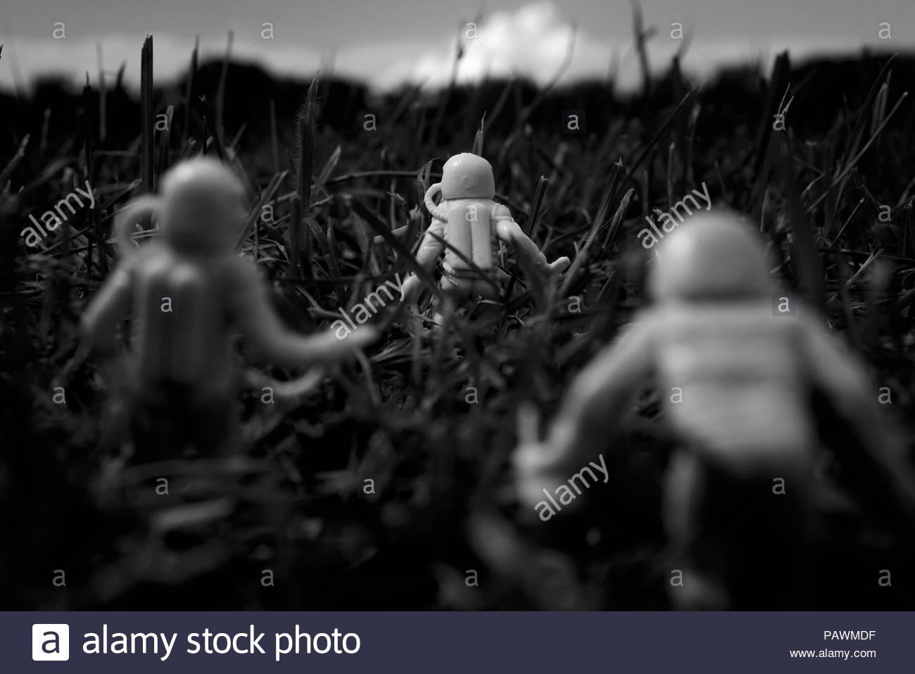 Astronauts walking in the vegetation of the planet Earth - Stock Image
