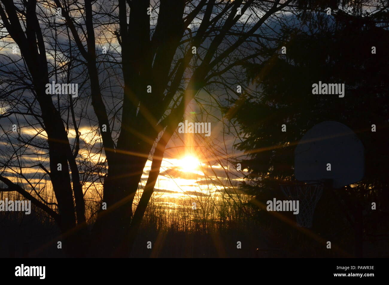 Taken in Russell, Ontario. This was taken in my front yard. - Stock Image