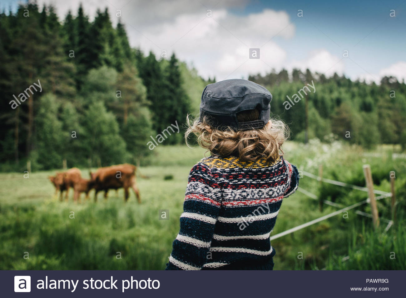 Rear view of young child in the countryside - Stock Image