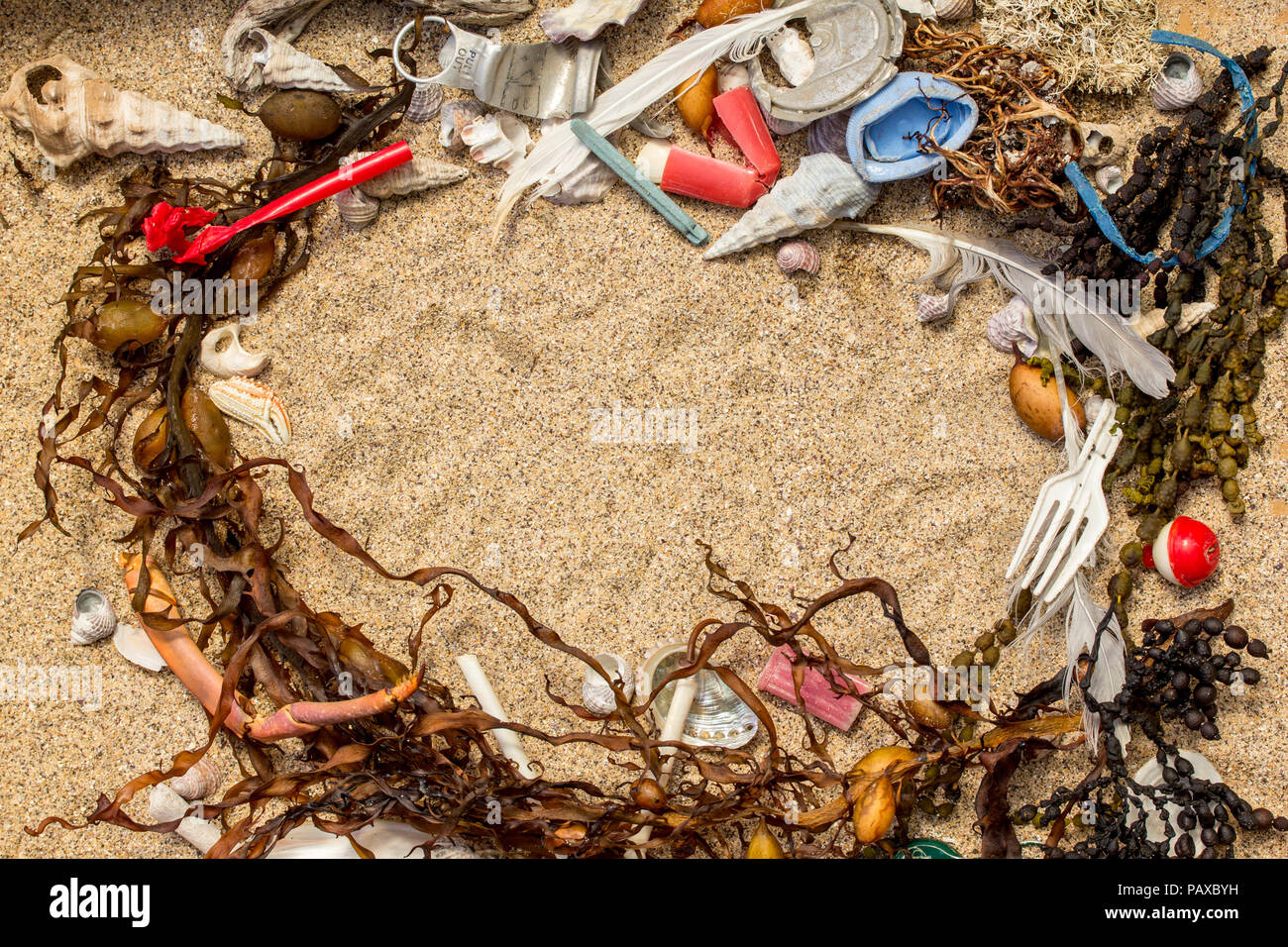 Real plastic pollution found on beach mixed in with natural seaweed and shells where it was found, space for text - Stock Image
