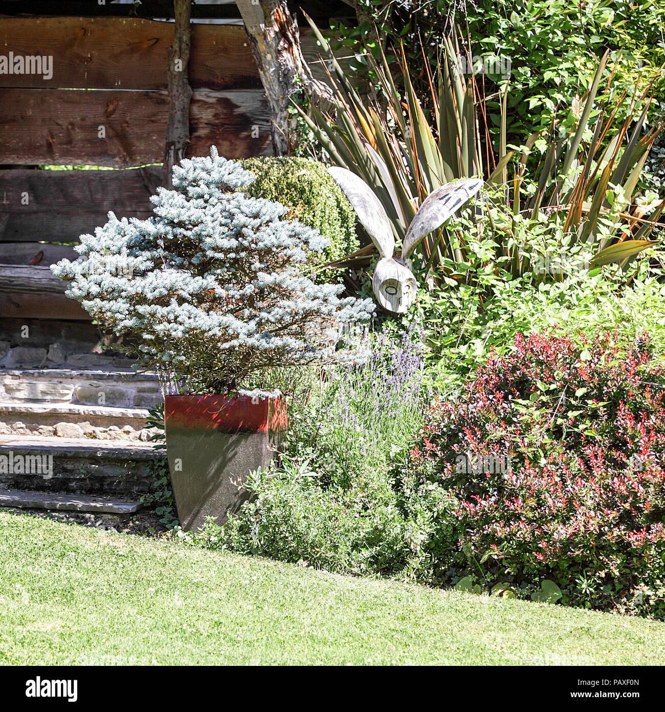 landscaped garden belonging to derwens garden centre in guilsfield