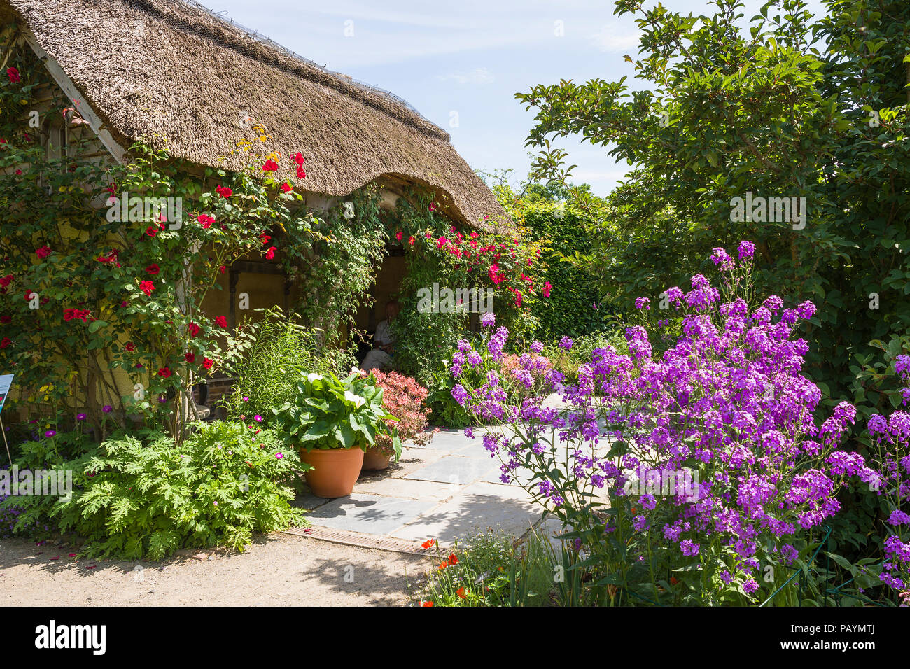 A cottage garden and thatched summer house at Rosemoor North Devon UK - Stock Image