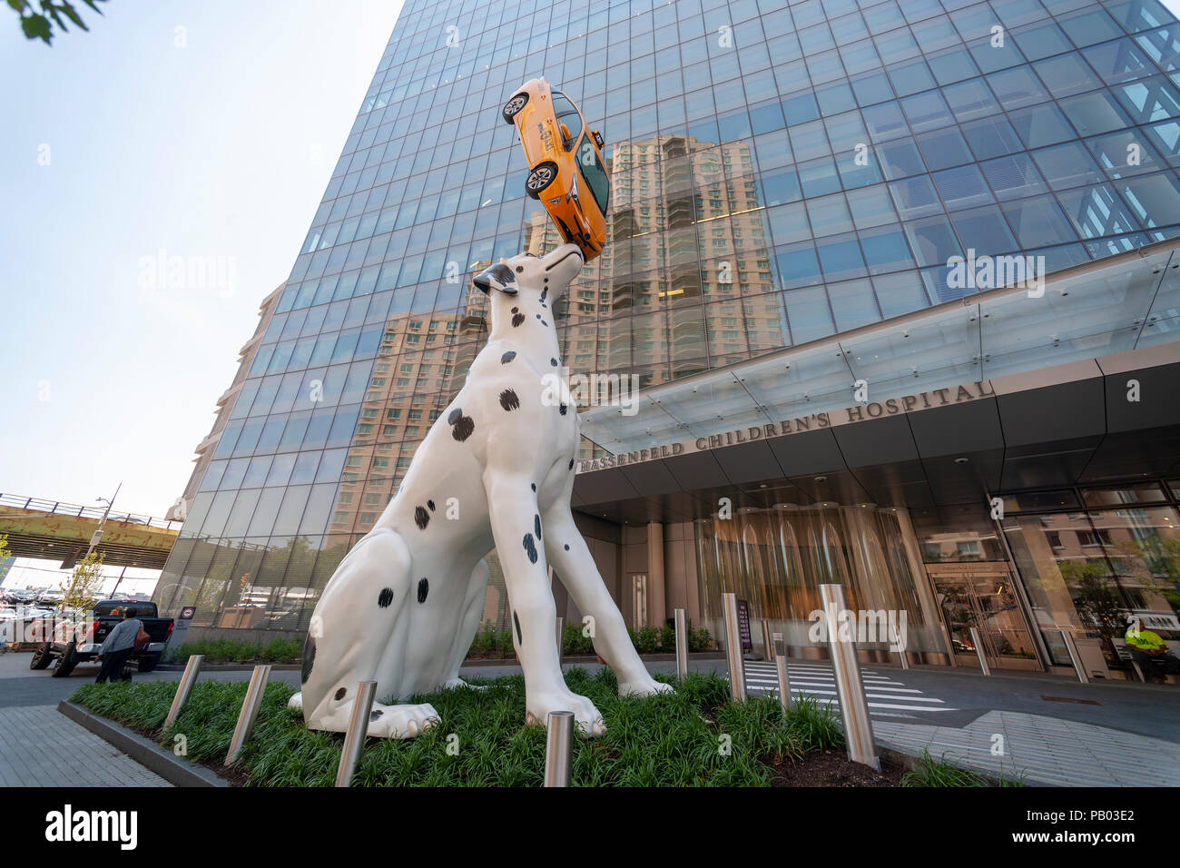 A sculpture of a Dalmatian balancing a taxi greets visitors to the Hassenfeld Children's Hospital, part of NYU Langone, seen on Wednesday, July 18, 2018. 'Spot' as the sculpture is named, by the artist Donald Lipski is 38-feet tall and constructed of fiberglass. The cab is an actual Prius sans motor. The humorous statue is meant to make a trip to the hospital more welcoming and less stressful. (© Richard B. Levine) - Stock Image