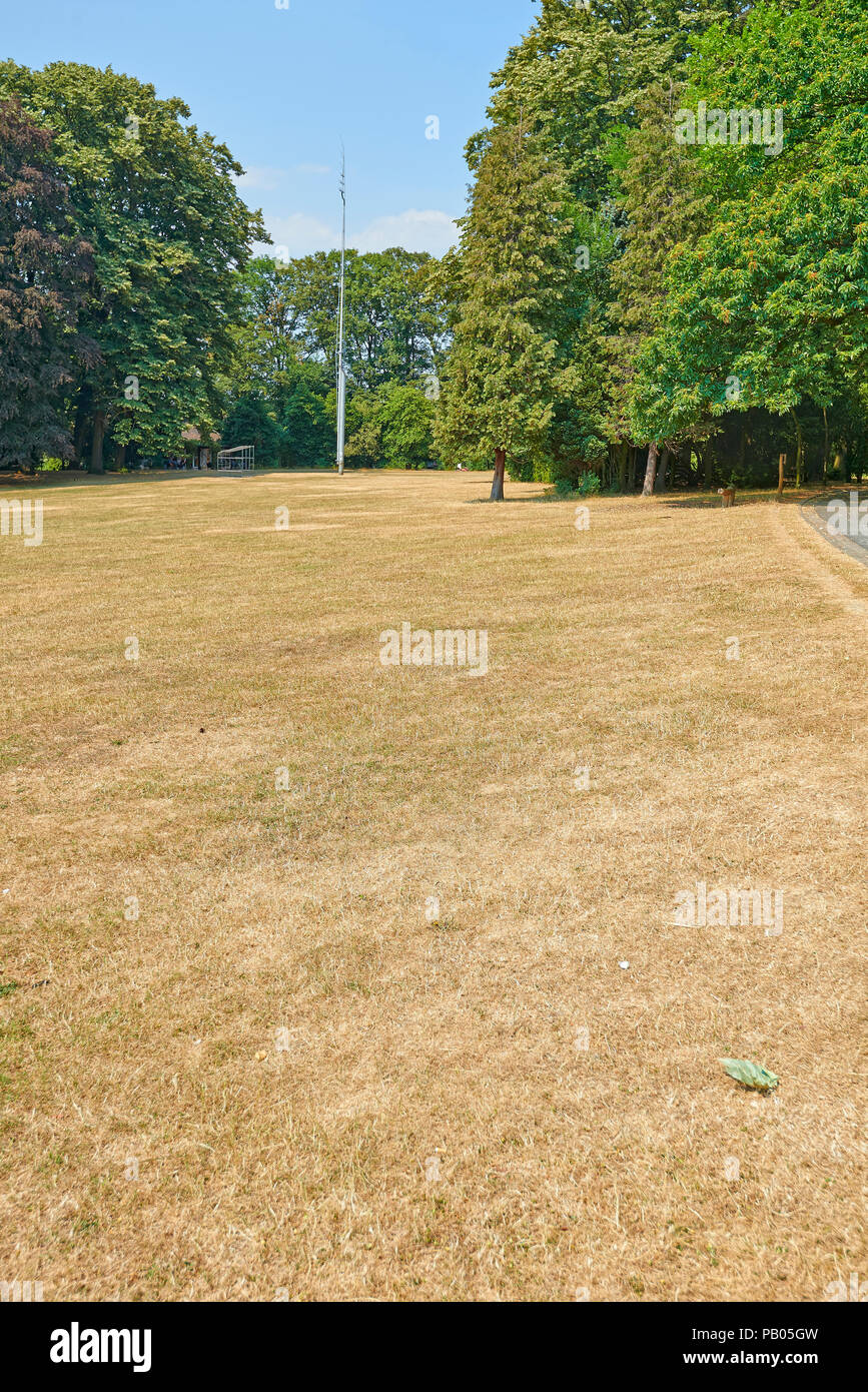 Deadly great heat waves at the park Josaphat in Brussels, Belgium - Stock Image
