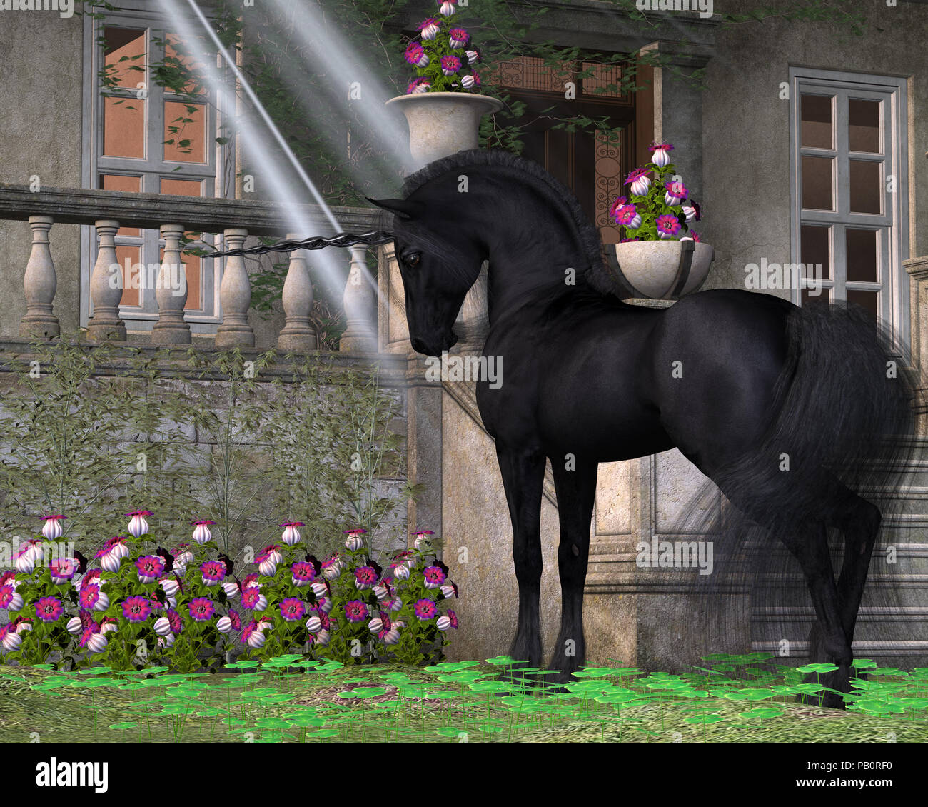 Enchanted Dark Unicorn - A black-coated magical unicorn takes an interest in pink Bell flowers near a forest cottage. - Stock Image
