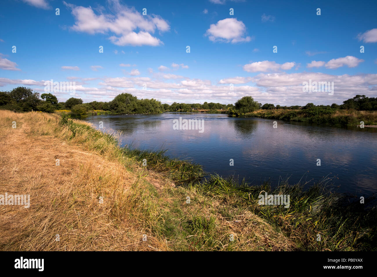 The River Trent near Sawley, Derbyshire during the UK summer heatwave 2018 - Stock Image