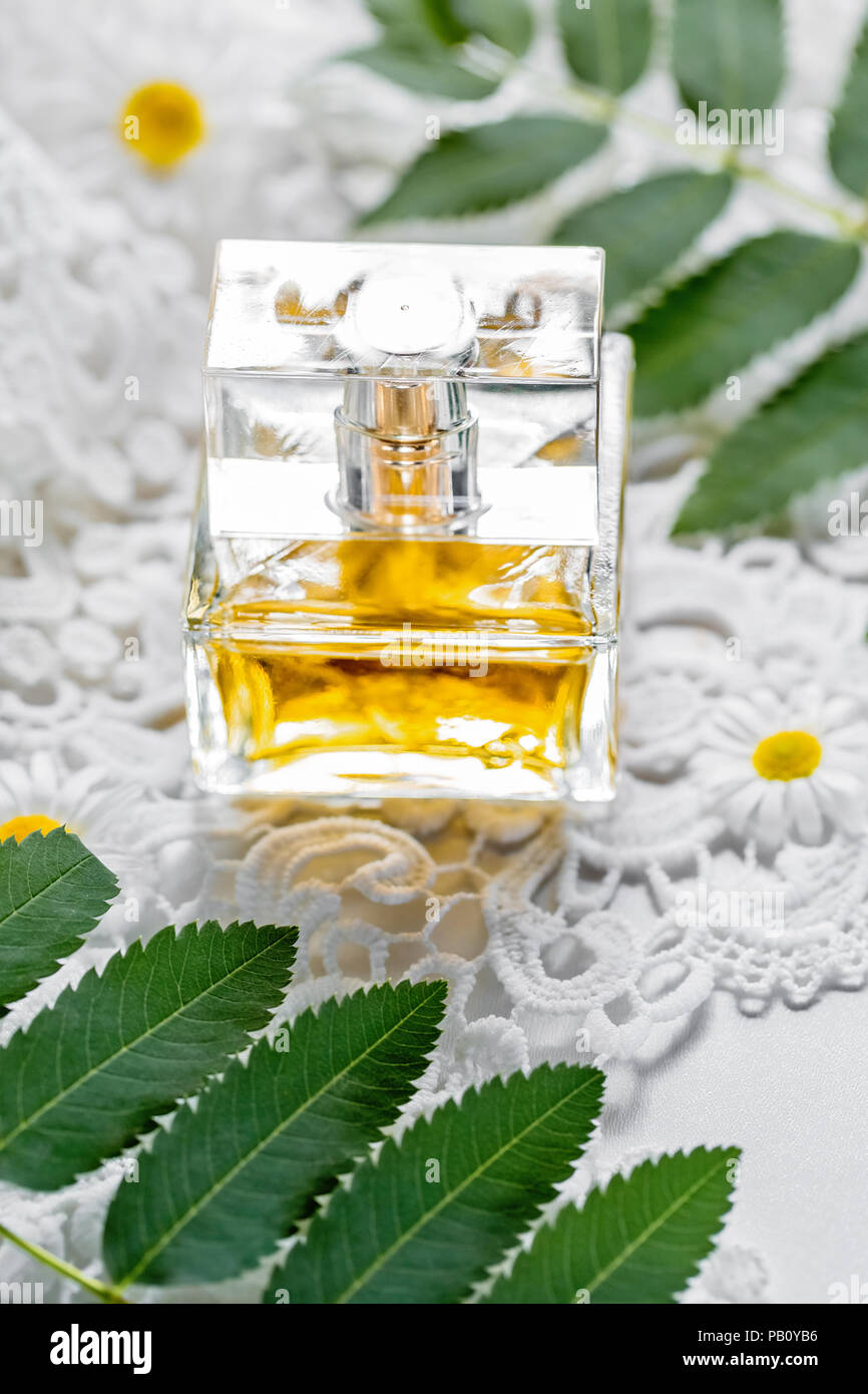Packaging with cosmetic on white background with field flowers and leaves. The concept of summer and idea for advertisement of perfume, scent, fragran - Stock Image