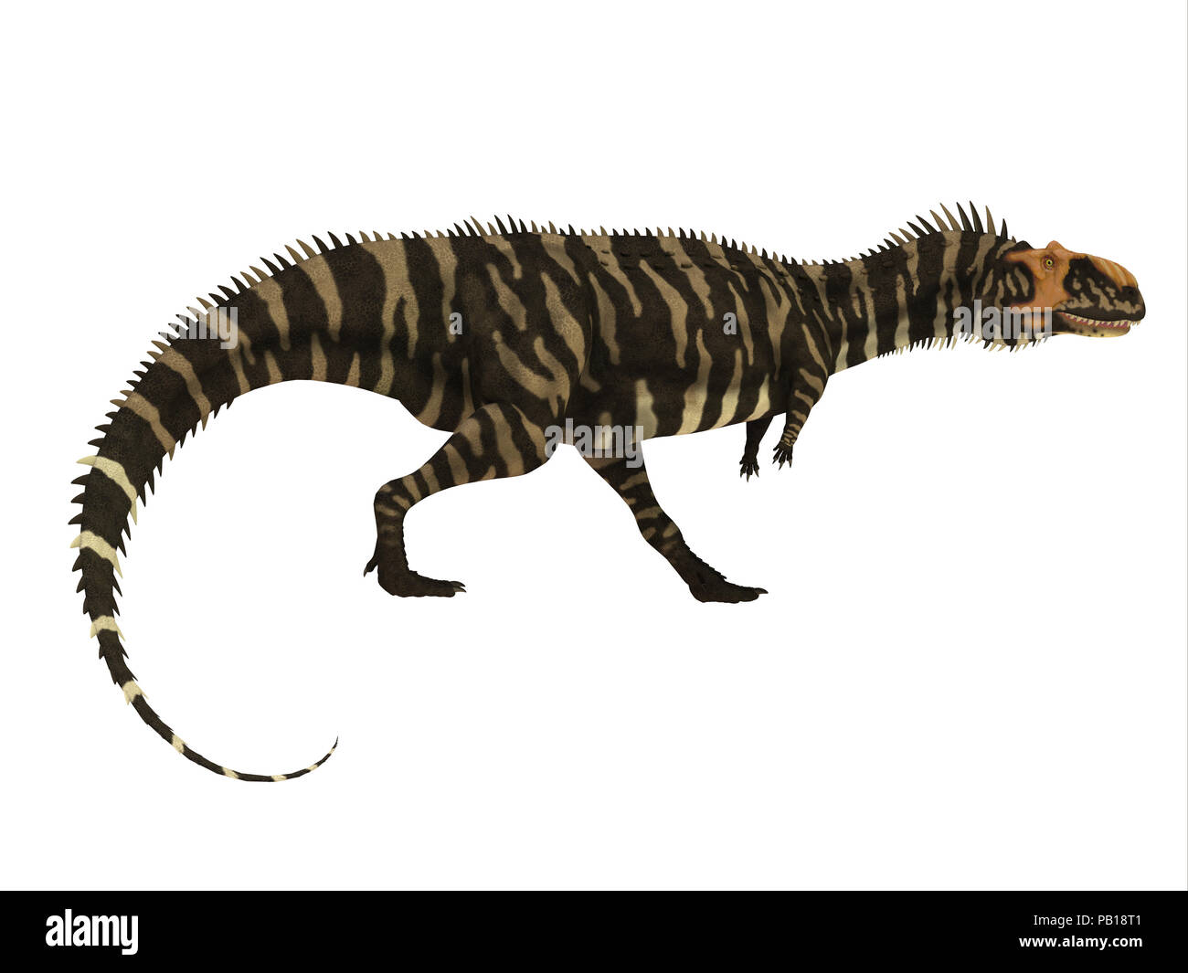 Rajasaurus Dinosaur Side Profile - Rajasaurus was a carnivorous theropod dinosaur that lived in India during the Cretaceous Period. - Stock Image