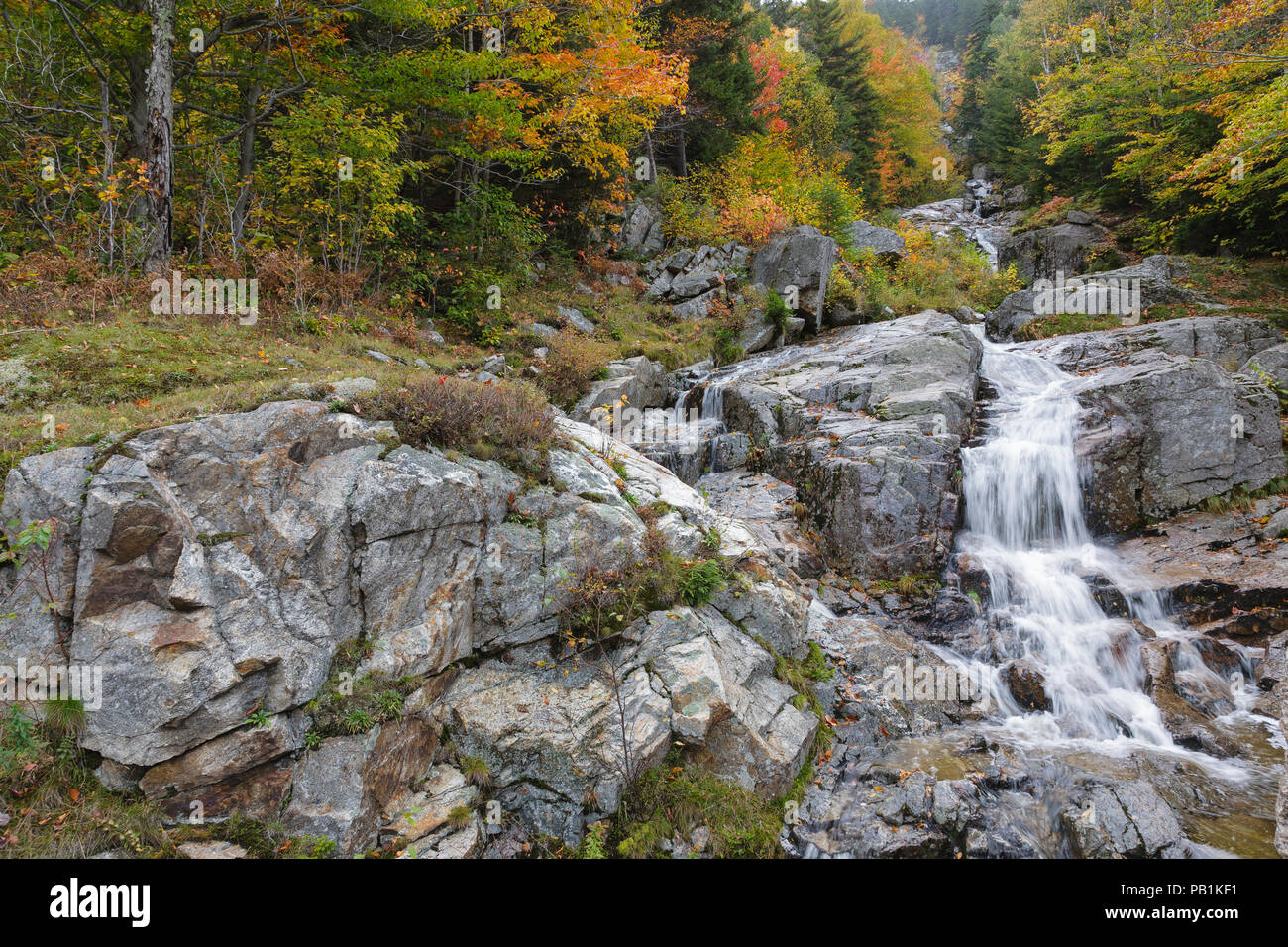 Flume Cascade in Hart's Location, New Hampshire during autumn months. This waterfall is roadside along Route 302 in Crawford Notch State Park. Stock Photo