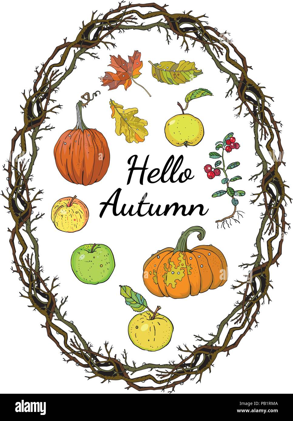 Hello autumn set: oval wreath branches frame, inscription, pumpkins, apples, oak and maple falling leaves. Harvest decoration. Hand drawn vector illustration. Harvest season. - Stock Vector