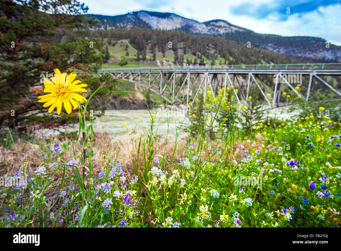 Bridge over the Fraser River at Williams Lake British Columbia Canada - Stock Image