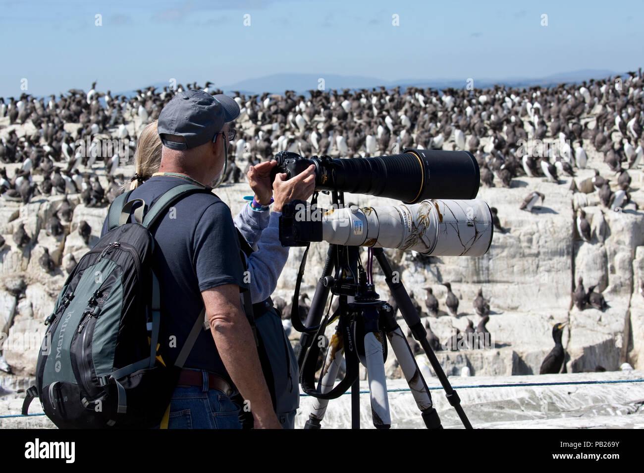 Two people telephoto lenses tripods photographing birds Farne Islands Northumberland UK - Stock Image
