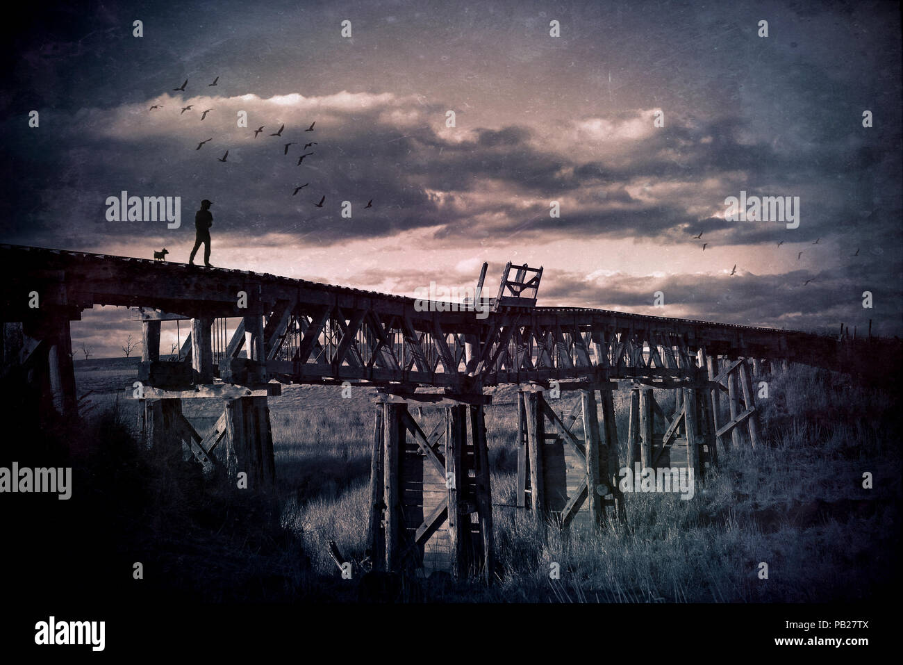 Lone man and his dog wander across an abandoned wooden railway bridge through the countryside. Grunge textured image. Wanderlust, travelling man, wand - Stock Image