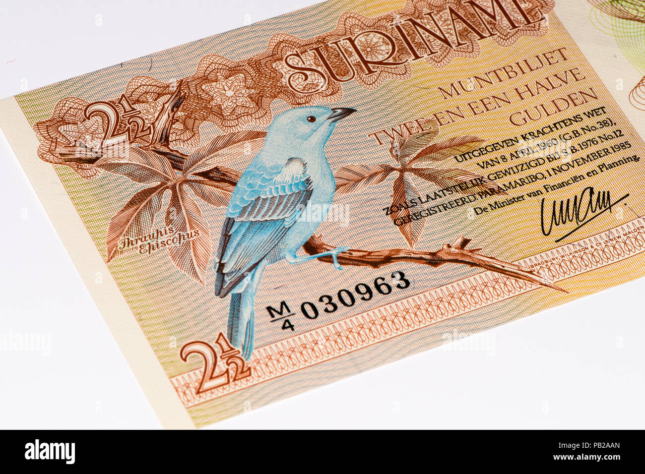 2.5 Surinamese gulden bank note. Gulden is the former currency of Suriname - Stock Image