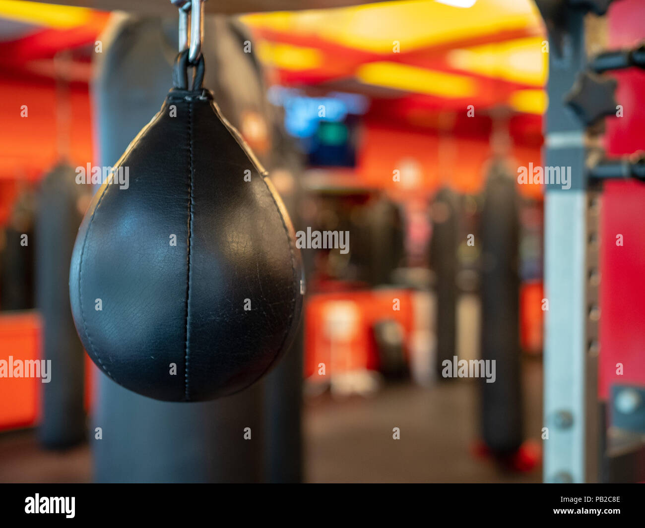 Black leather speedbag, with Muay Thai bags in the back, ready for use in a gym - Stock Image