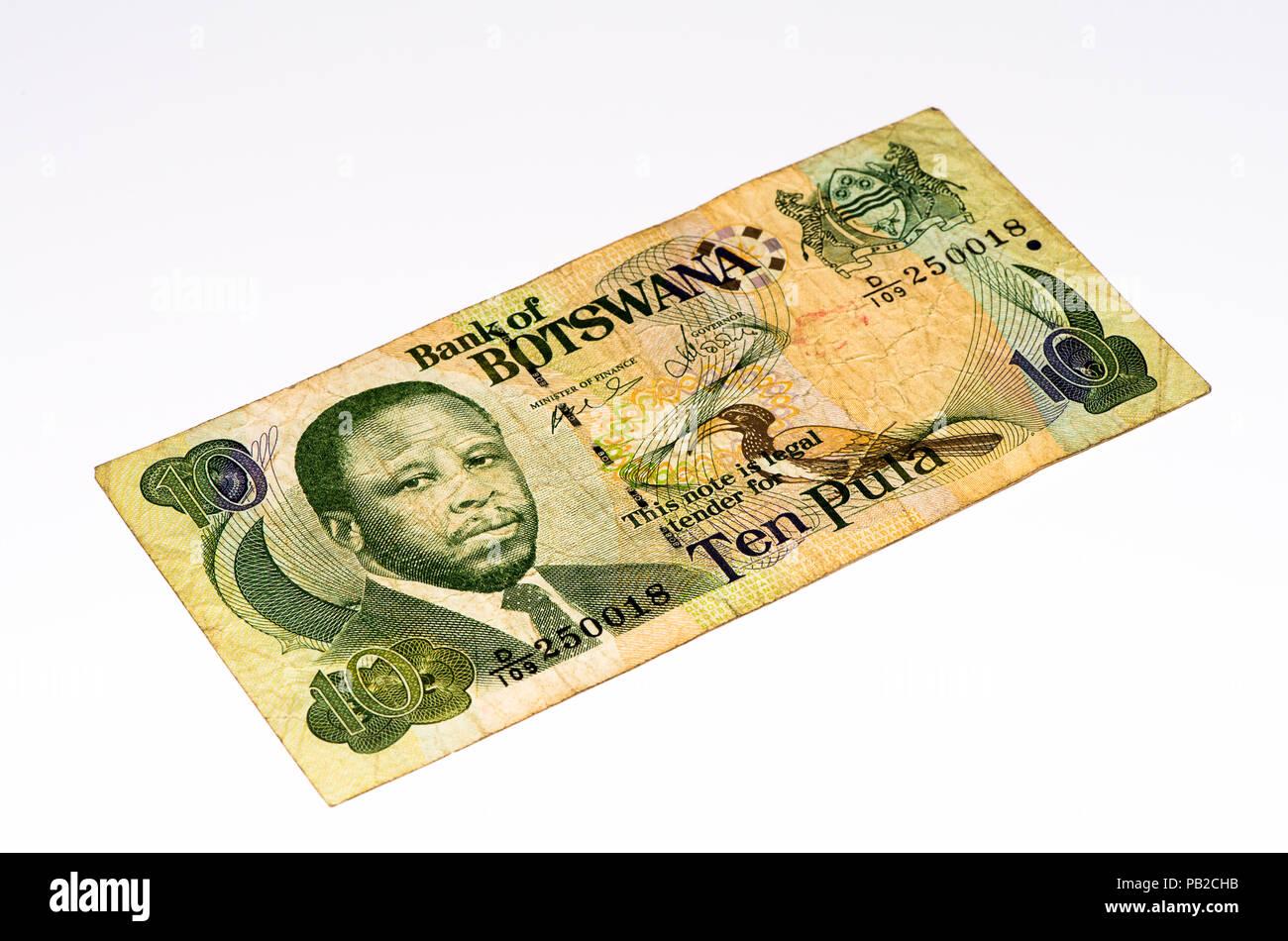 10 Pula Of Botswanapula Is The National Currency Of Botswana Stock