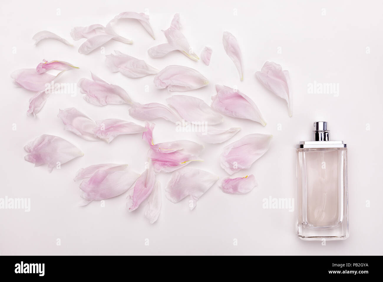 perfume and flower petals top view - Stock Image