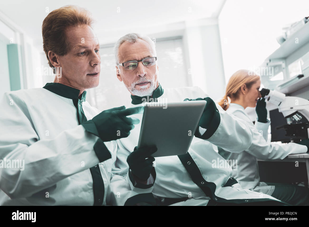 Bearded biologist asking piece of advice from his chef - Stock Image