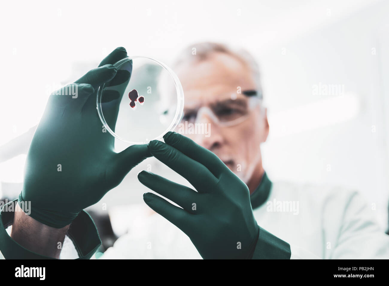 Serious chemist holding test tube in his hands wearing gloves - Stock Image
