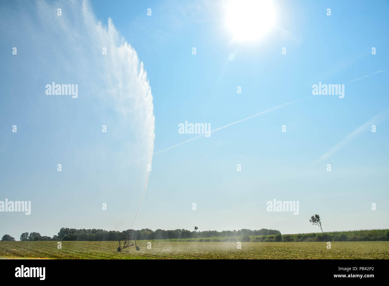 heat wave over europe. Record temperatures and harvest loss. - Stock Image