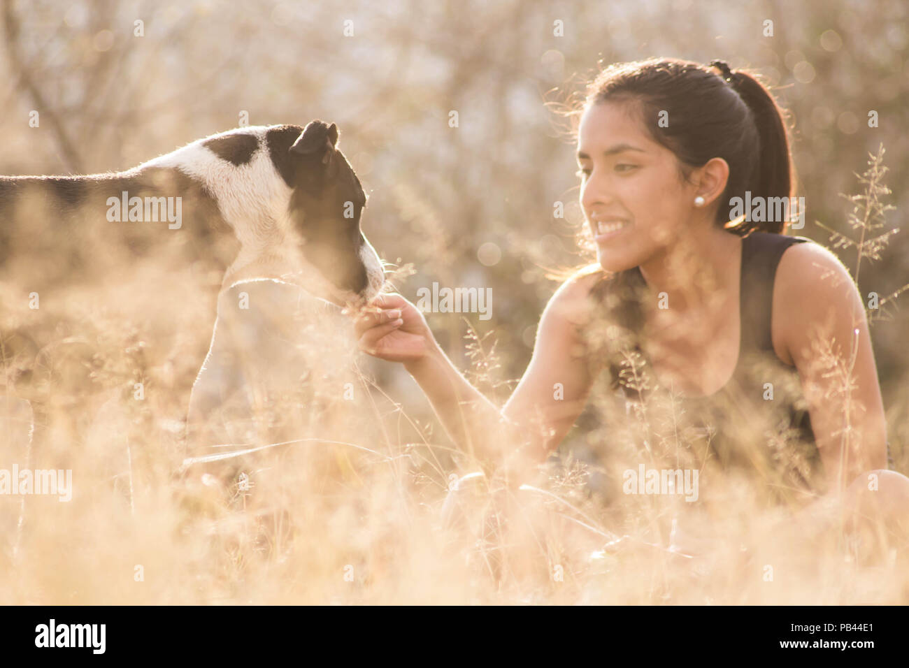 Girl Playing with her dog - Stock Image