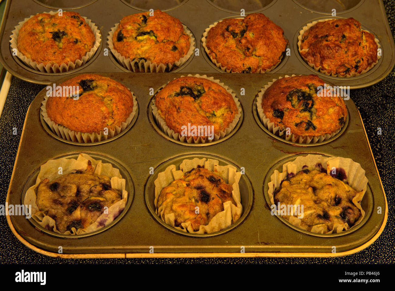 Blueberry muffin comparison- with and without baking soda, Greater Sudbury, Ontario, Canada - Stock Image
