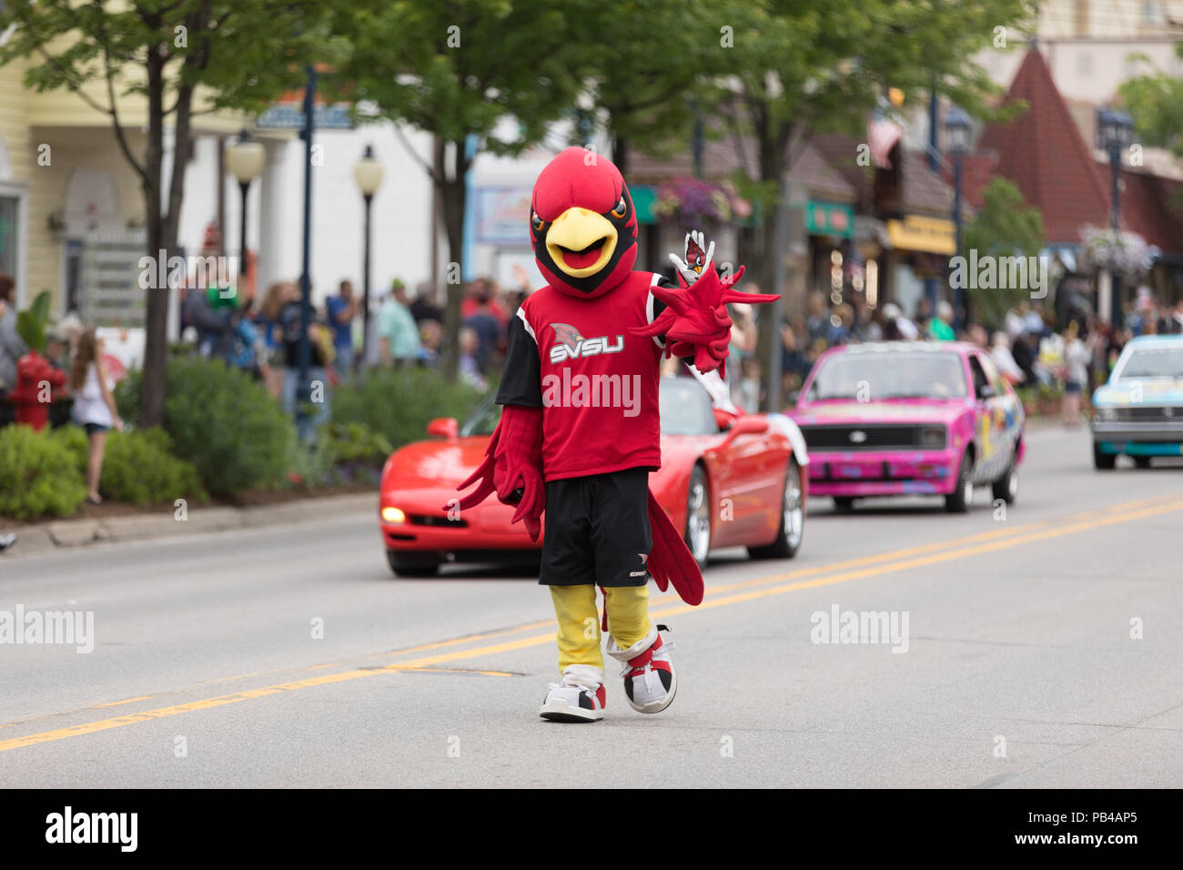 Frankenmuth, Michigan, USA - June 10, 2018 Man dress up as a cardenal the mascot from  Saginaw Valley State University at the Bavarian Festival Parade - Stock Image