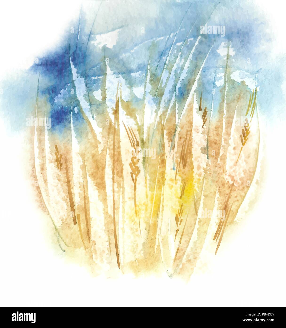 Watercolor Organic Eco Friendly Wheat Field Before The Storm. Vector Background - Stock Vector