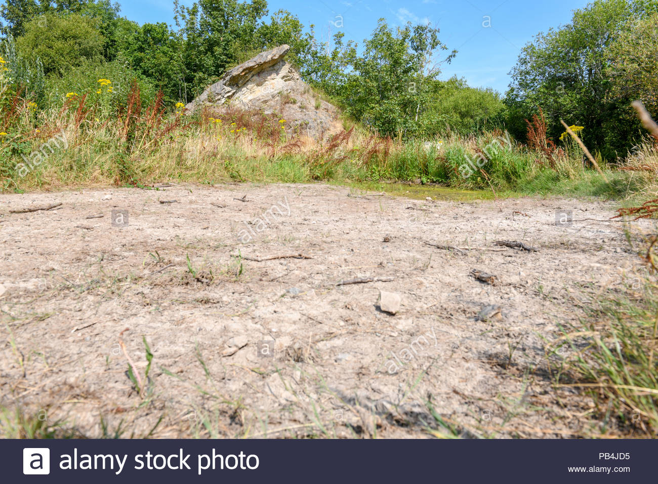 Dried up wildlife ponds surrounded by dry grassland in Shropshire UK - Stock Image