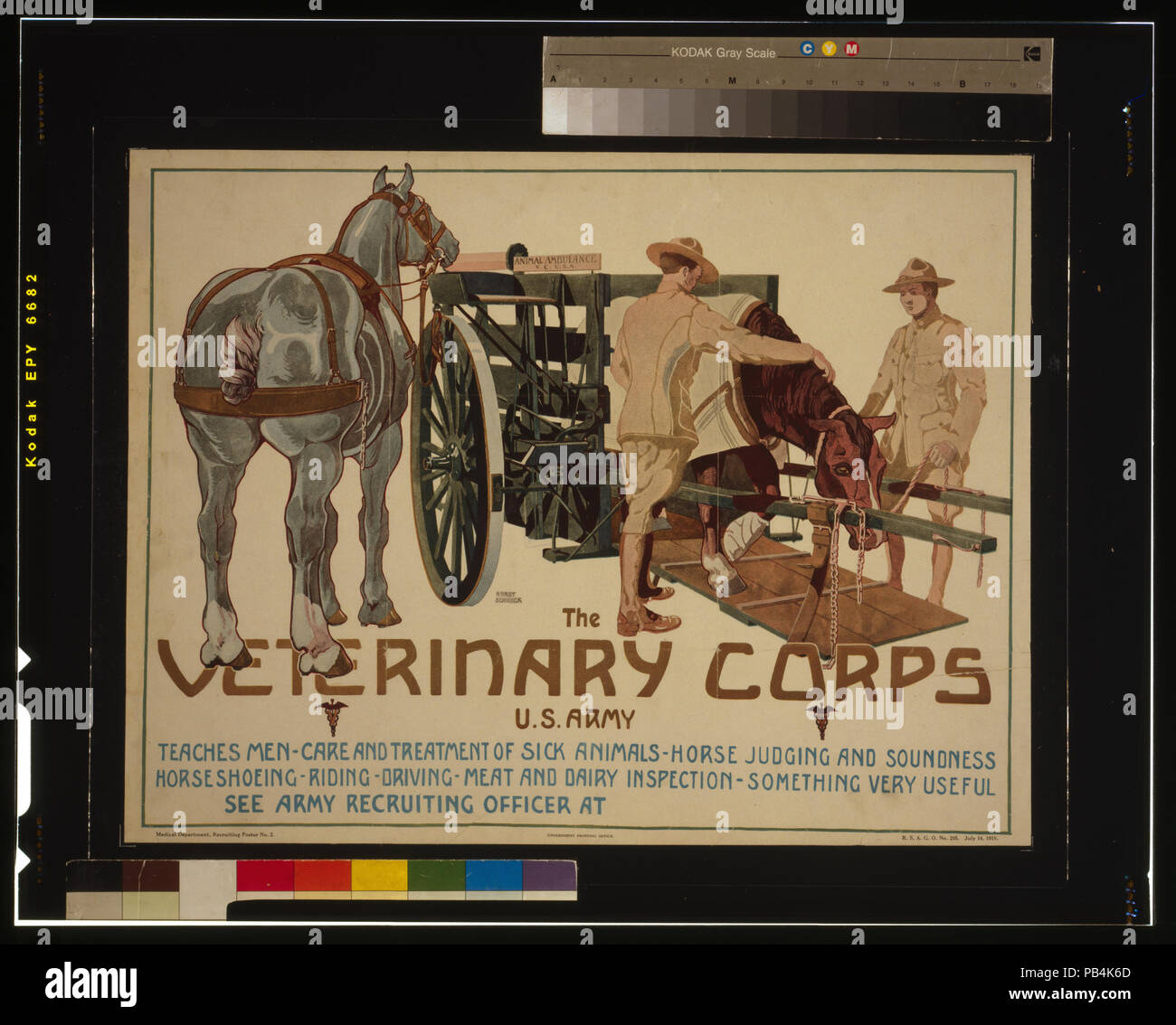 1710 The Veterinary Corps, U.S. Army, teaches men care and treatment of sick animals; horse judging and soundness; horseshoeing; riding; driving; meat and dairy inspection - something very useful LCCN2002722448 - Stock Image