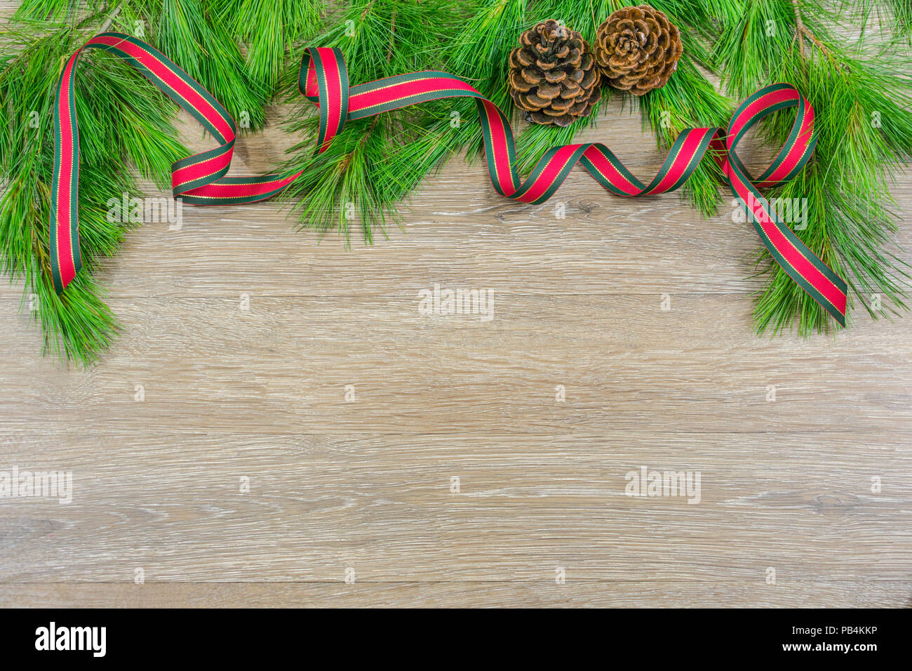 Scotch Pine Christmas Tree Stock Photos & Scotch Pine Christmas Tree ...